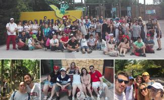 Management Solutions - Volunteering with Down Madrid